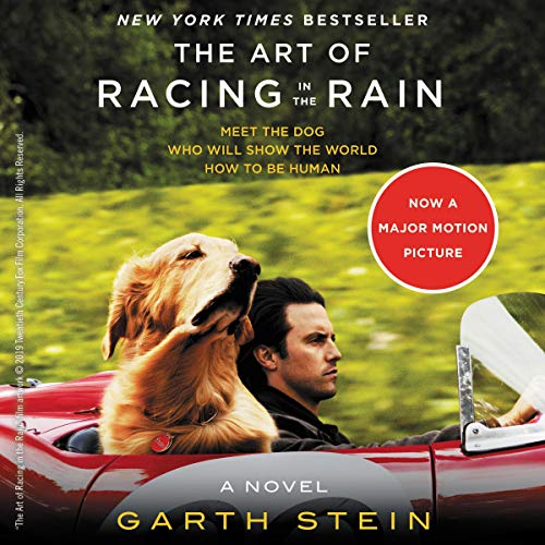 the art of racing in the rain audiobook